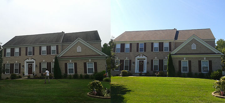 Low Pressure Roof Cleaning | Manassas VA