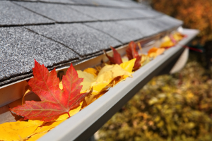 Gutter Cleaning | Fairfax VA